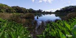Piton de l'eau - Réunion Photo n°3
