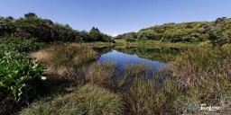 Piton de l'eau - Réunion Photo n°4