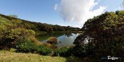 Piton de l'eau - Réunion Photo n°7