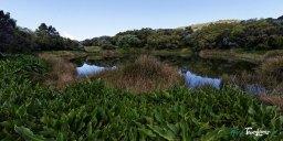 Piton de l'eau - Réunion Photo n°8