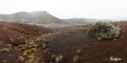Vallée de Pouzzolane - Volcan de La Réunion Photo n°1