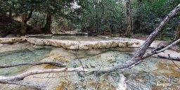 Les vasques de l'Huveaune dans le massif de la Sainte-Baume - Var (83) Photo n°3