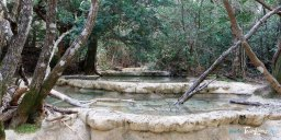 Les vasques de l'Huveaune dans le massif de la Sainte-Baume - Var (83) Photo n°5