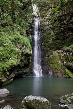 Cascade Chouchou - Réunion Photo n°6