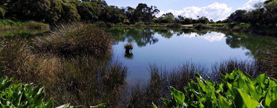 Piton de l'eau - Réunion