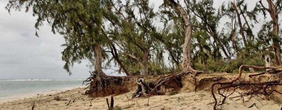 Plage de l'Ermitage après le passage du cyclone BEJISA